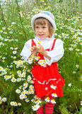The girl in camomiles. The girl costs in camomiles and smiles stock photo