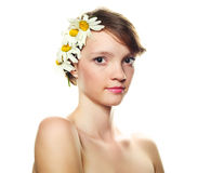 Girl with   camomiles Stock Photos