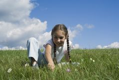 Girl and camomiles I. The nice girl sitting  on  the grass with camomile Stock Photography