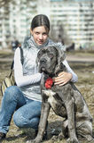 Girl and Cane corso puppy Stock Photography