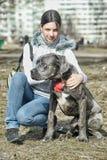 Girl and Cane corso puppy Royalty Free Stock Photos