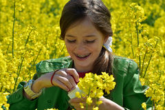 Girl in canola field Royalty Free Stock Images