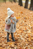 Girl in a cap and autumn leaves standing in autumn park in the evening. Girl in a cute cap and autumn leaves standing in autumn park in the evening Stock Photo