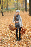 Girl in a cap with a basket of autumn leaves in autumn park in the evening. Girl in a gray cap with a basket of autumn leaves in autumn park in the evening Stock Photography