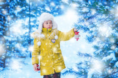 The girl in a cap and a jacket in the winter in the wood Royalty Free Stock Photography