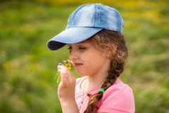 Girl in a cap sniffing flowers in summer day royalty free stock photography