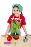 Girl care flowers on the desk Royalty Free Stock Photos