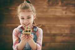 Girl cares for plants Royalty Free Stock Photography