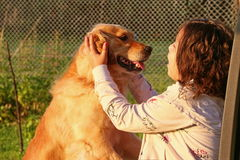 Girl caress dog Royalty Free Stock Image