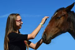 Girl caressing horse Royalty Free Stock Photos