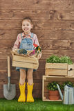 Girl caring for her plants Royalty Free Stock Image