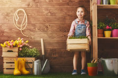 Girl caring for her plants Royalty Free Stock Images