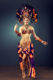 Girl in the carnival costume. Royalty Free Stock Images