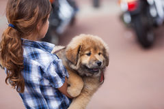 Girl carries her puppy in the city royalty free stock photography