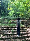 Girl carrying a backpack on steps with arms open to both sides. In forest, China. back view royalty free stock image