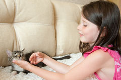 Girl with a cat Royalty Free Stock Photos