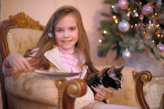 Girl with a cat in a chair Royalty Free Stock Image