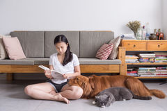 Girl and cat and dog. Indoor shooting Stock Photo