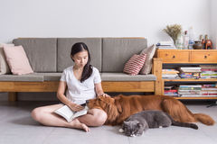 Girl and cat and dog Stock Photography