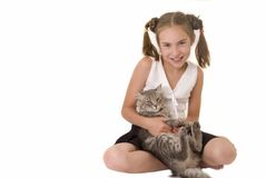 Girl with a cat III. The nice girl with a grey cat Stock Image