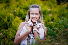 Girl and cats Stock Image