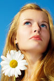 Girl with chamomile Stock Images