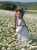 Girl on chamomile field Royalty Free Stock Photography