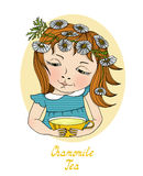 Girl with chamomile on hair Royalty Free Stock Photography