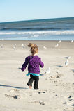Girl chasing birds Stock Photos