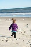 Girl chasing birds. At the beach Stock Photos