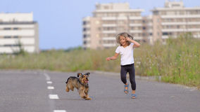 Girl chasing her puppy. Young blonde girl chasing after her brown and black English Cocker spaniel puppy on a quiet road with apartments in the background royalty free stock photo