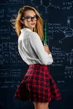 Girl in checkered skirt Royalty Free Stock Photography