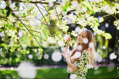 Girl in cherry blossom garden on a spring day Stock Images