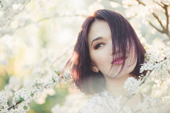 Girl with Cherry Blossom. Young Woman next Sakura Stock Photo