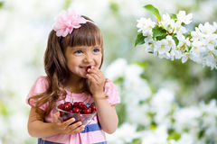 Girl with cherry bowl in apple garden Stock Photography