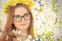 Girl in cherry flowers Royalty Free Stock Photo
