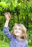 Girl with cherry in the hand Stock Photos