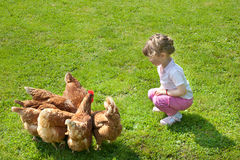 Girl and chickens Royalty Free Stock Image