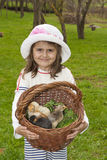 Girl and chickens Stock Image