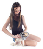 Girl and chihuahua Stock Images