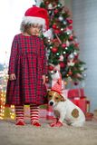 Girl child celebrates Christmas with dog Jack Russell Terrier at stock photography