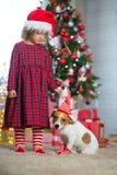 Girl child celebrates Christmas with dog royalty free stock photo