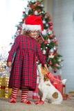 Girl child celebrates Christmas with dog royalty free stock images