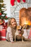 girl child celebrating a happy Christmas at home by the fireplace with a pet dog Jack Russell stock photo
