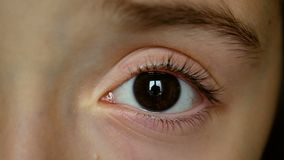 Girl child eye, dark brown left eye close up, Closeup of girl child eye stock video