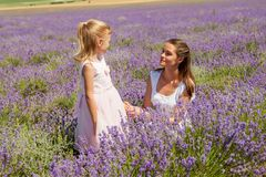 Girl with a child in a field of lavender stock image