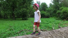 Girl child goes on the trunk of a large tree. Dry cut down sick trees lying on the ground. stock footage