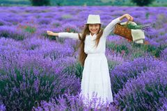 Girl child is in the lavender flower field, beautiful summer landscape stock photo