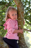 Girl child in tree. A beautiful cute little blue eyed inactive toddler girl sitting in a tree being very sceptical and afraid waiting for her father to help Stock Photos