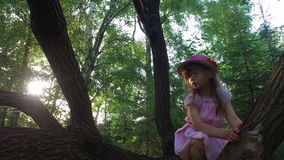 Girl child tries to climb a tree. But she can not. She is still small. Old overgrown park. stock footage